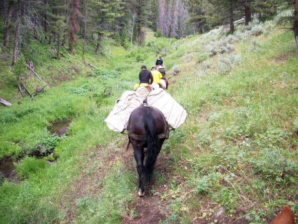 Idaho Pack Trips, Packing In