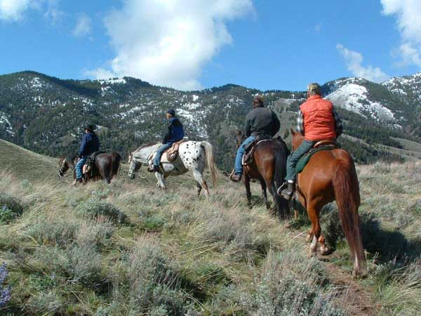 Horseback Day Riding Idaho