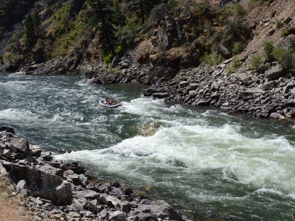 Whitewater Rapids, Salmon River